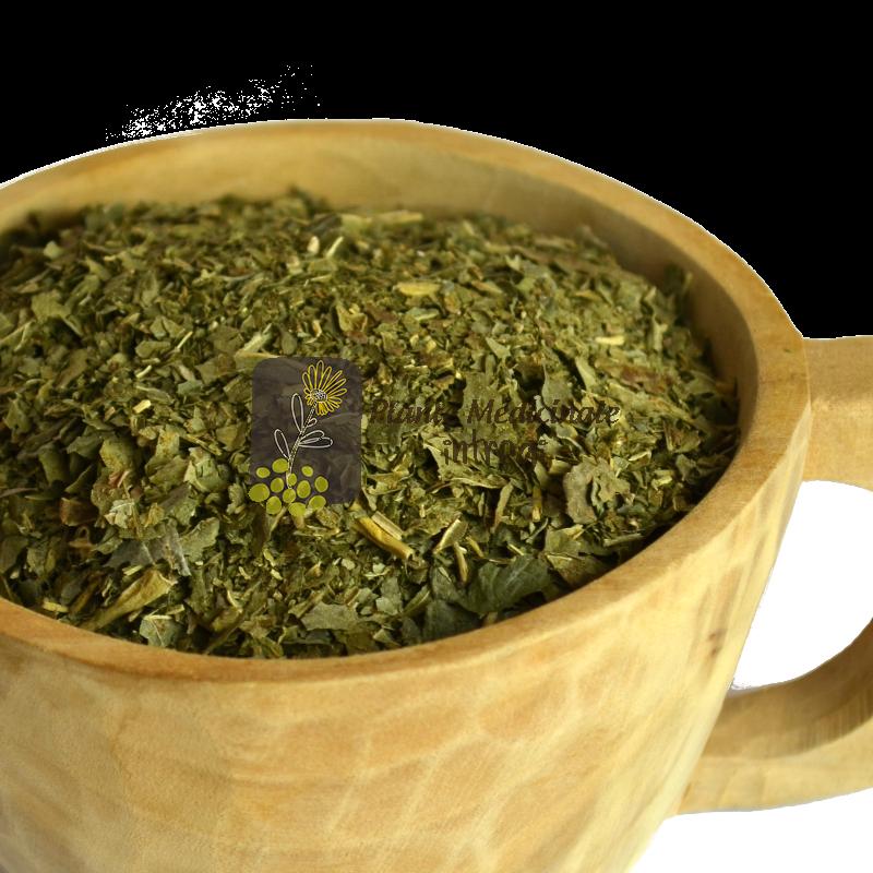 Muguri de Coacaz Negru, 50 ml, Dacia Plant