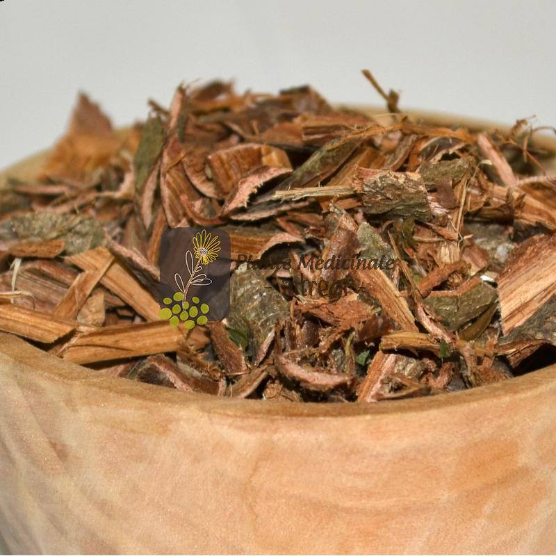 scoarță stejar pentru varicoză